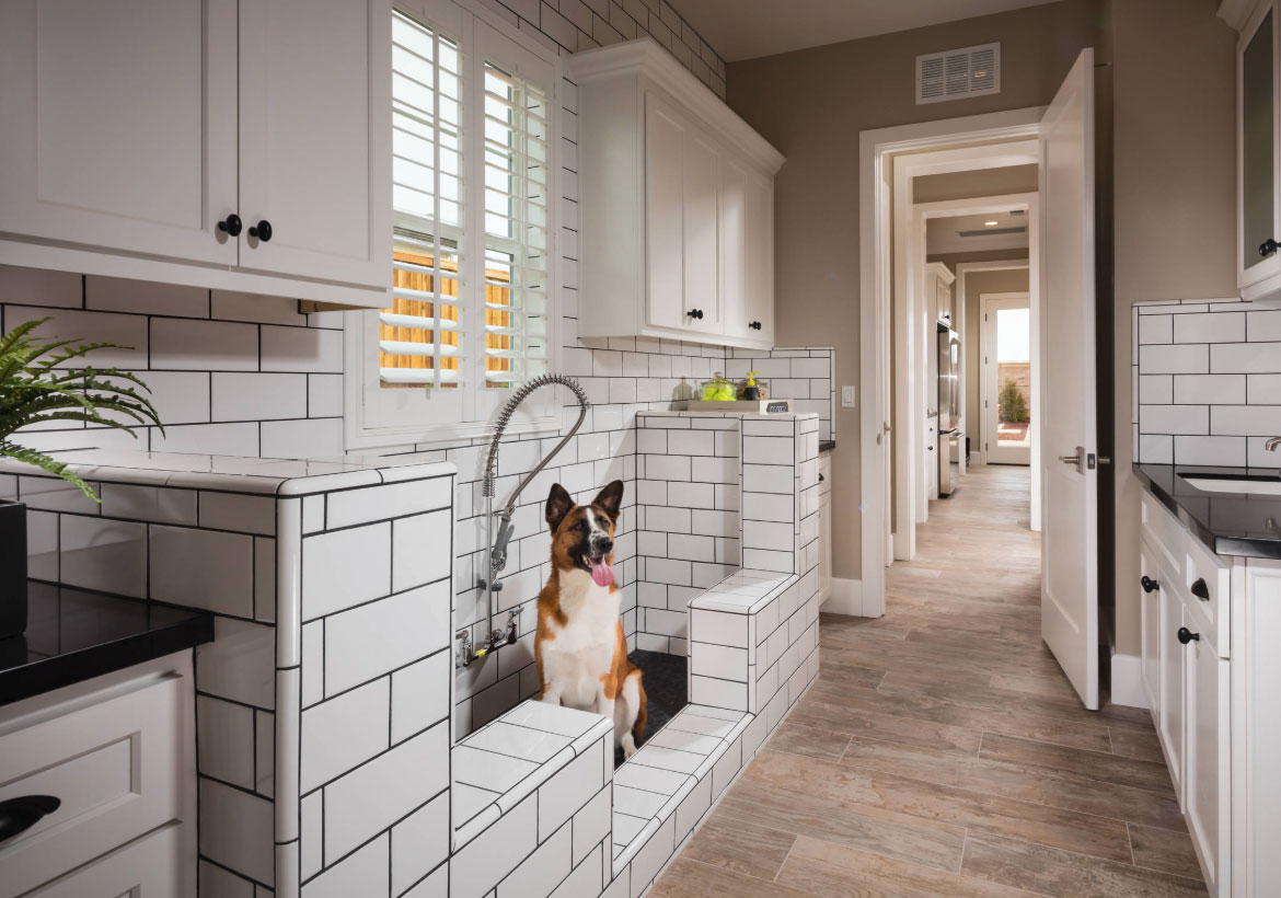 Creating the Ultimate Pet-Friendly Home